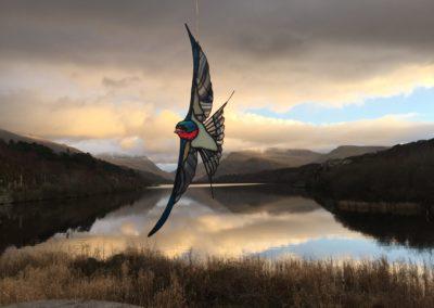 Barn Swallow III (landscape, sunset)