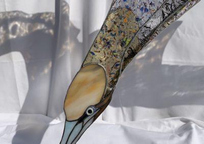 Gannet face