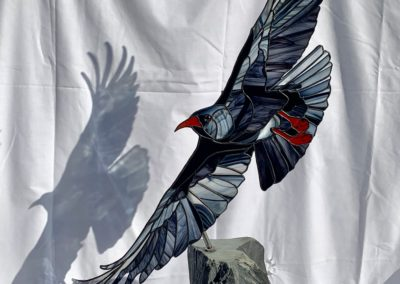 Chough on stand